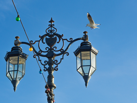 Vintage Lamps at Southsea, Portsmouth, clear blue sky, seagull landing