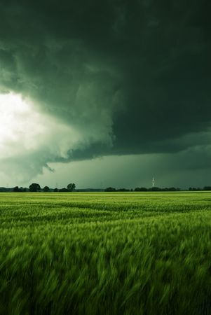 wind force: Thundery clouds over a barley field Stock Photo
