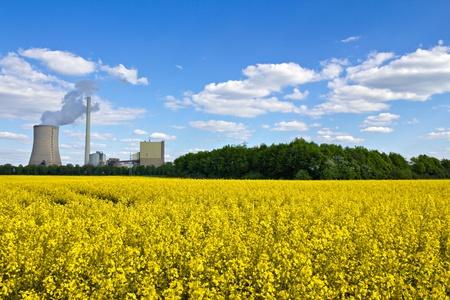 coal plant: Rape field and power plant under a blue sky. Stock Photo