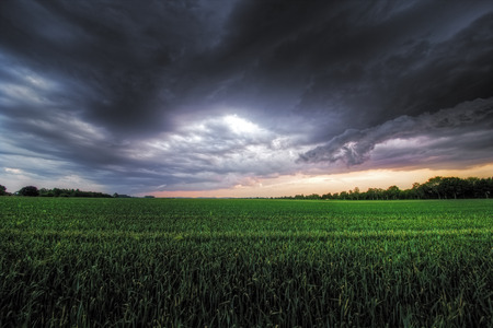 elemental: The picture shows a storm that's brewing over a field