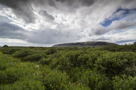 rainclouds: The picture shows a landscape and rain clouds.
