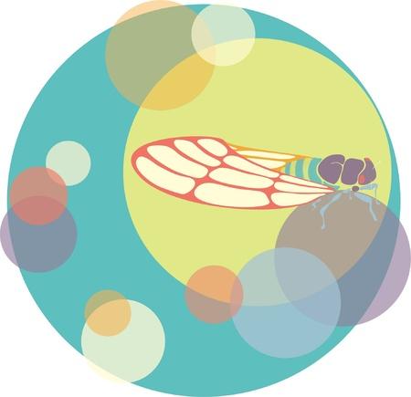 cicada: Vector cicada illustration with circles Illustration