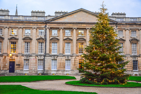 Christmas tree in front of the historic building in Oxford, England, United Kingdom. Christmas Festive Season decoration.