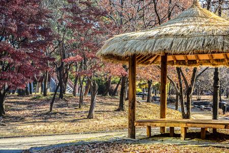 Korean traditional straw pavilion in autumn park, Seoul, South Korea Фото со стока