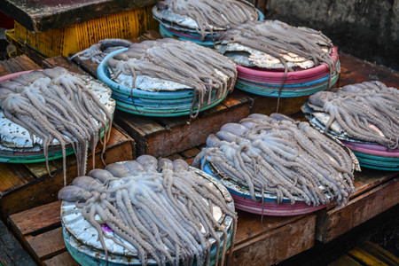 Fresh Seafood Outdoor market in Busan, South Korea Banque d'images - 102677444