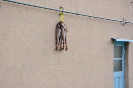 Dried fishes hanging on the wall. Local Food preparation. Banque d'images - 102674030