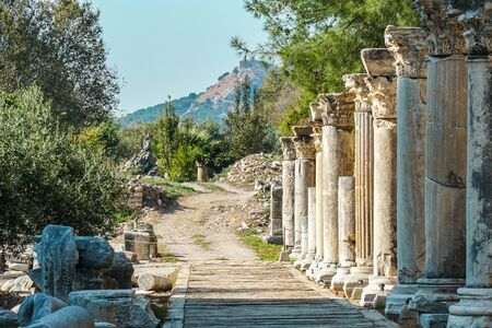 The ruined of the ancient city of Ephesus, Selcuk, Turkey Banque d'images - 134462362