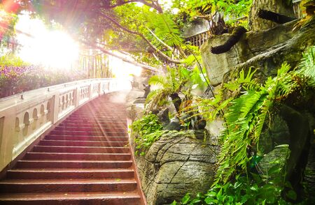 Blurred background of stairway to heaven with sunlight flare and freshly green forest Stock Photo
