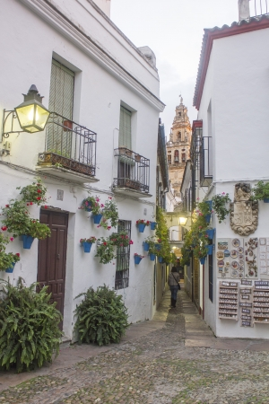 Flower Alley in Cordoba - Spain Stock Photo - 17423313