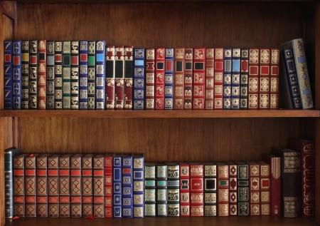 estanterias: Los estantes llenos de libros