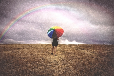 storm rain: Woman in field with colorful umbrella in the rain Stock Photo