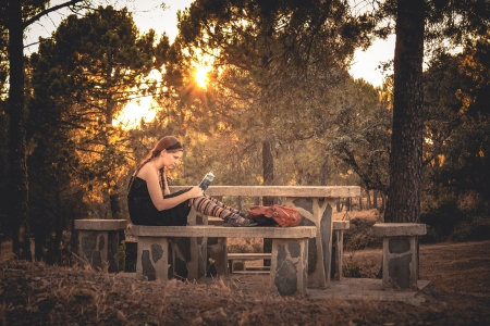 Young woman reading a book in the forest photo