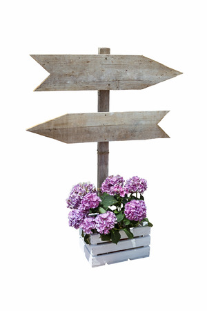 Wooden billboard with directional signs with isolated  Stock Photo