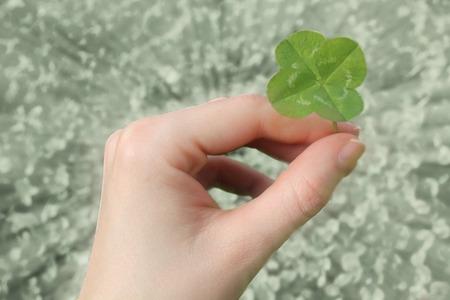 three leaved: Four leaf clover