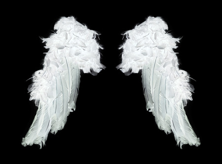 nobody real: White angel wings on black background