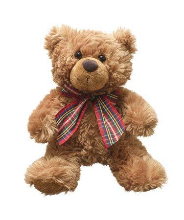 테디 흰색 배경이에 격리 곰