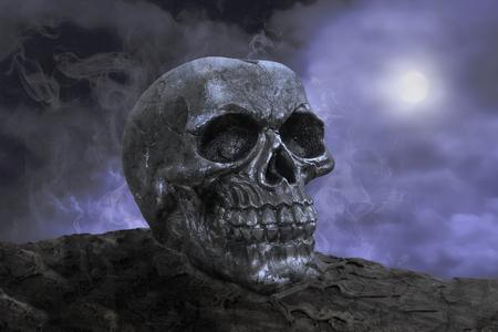 Skull in the night Stock Photo