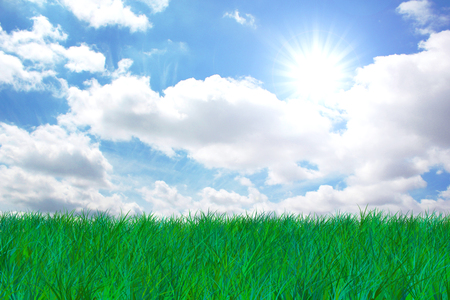 blue sky and fields: Grass and sky with sun and clouds Stock Photo
