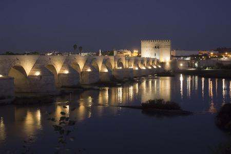 architectural heritage of the world: Roman bridge in Cordoba at night - Spain