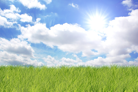 Grass and sky with sun and clouds Stock Photo