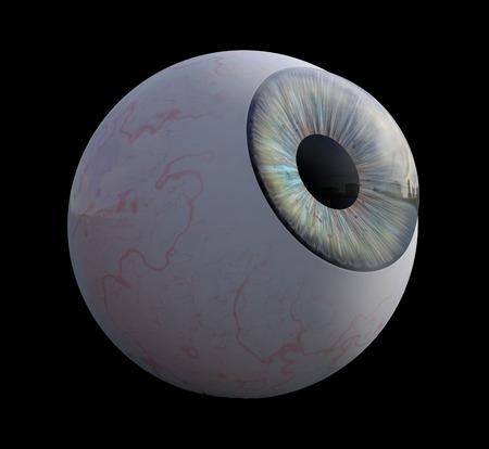 3D illustration - Human eye isolated on black bacground Stock Photo
