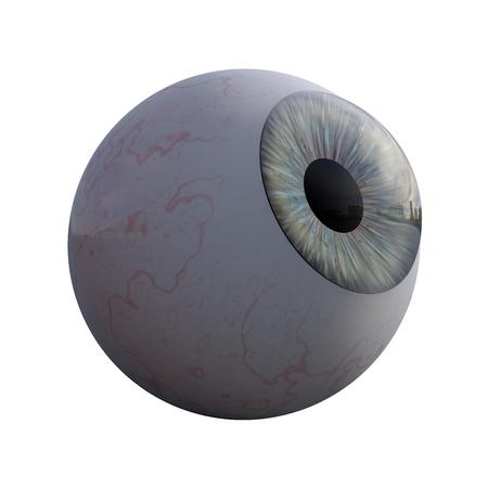 3D illustration - Blue human eye isolated on white background
