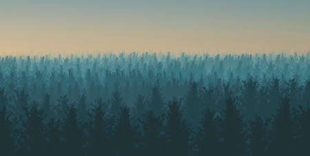 Illustration of a forest with fog at sunset Stok Fotoğraf