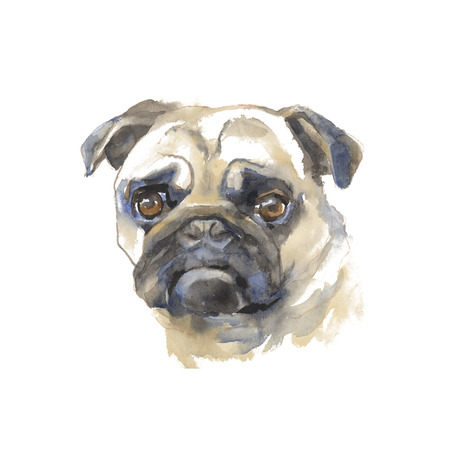 The mops - hand-painted watercolor dog portraits