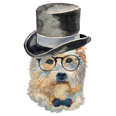 The West Highland White Terrier - hand painted, isolated on white background watercolor dog portrait