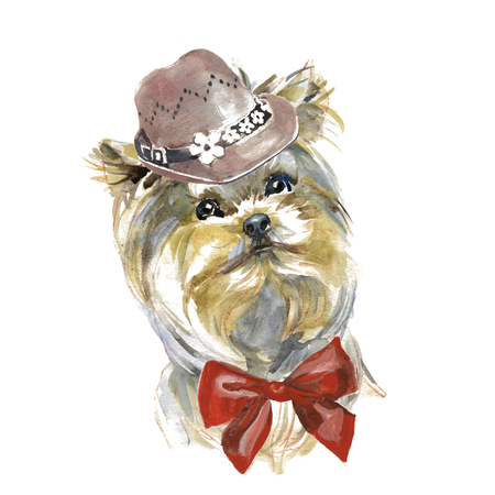 The Yorkshire Terrier - hand painted, isolated on white background watercolor fashion cute dogs portrait