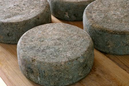 hard cheese Reklamní fotografie