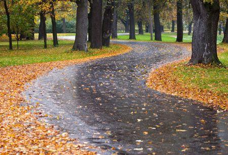 Autumn road-1 Banco de Imagens
