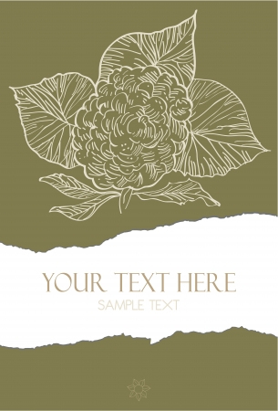 Illustration of a flower on torn paper with space for custom text  Vectores