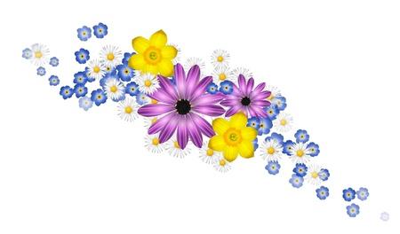 flores de cumplea�os: Flores de primavera