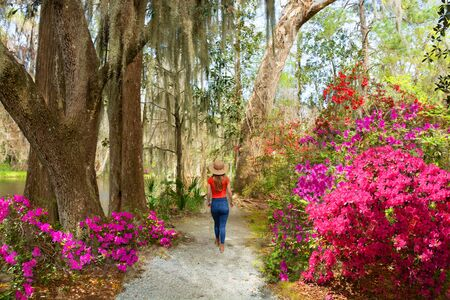 Girl walking alone in beautiful garden on spring trip. Young woman relaxing alone in the park. Azaleas in bloom under oak tree. Magnolia Plantation and Gardens, Charleston, South Carolina, USA