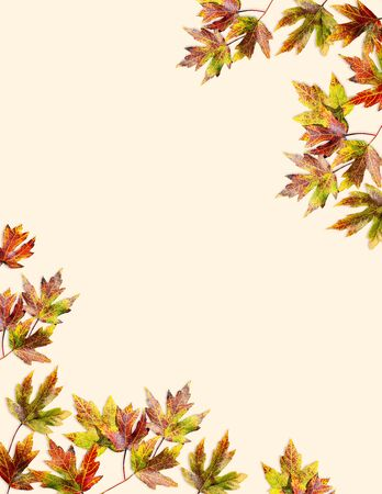 Autumn leaves composition for fall season projects. Beautiful fall leaves design with copy space. Colorful Fall foliage frame for text. 版權商用圖片