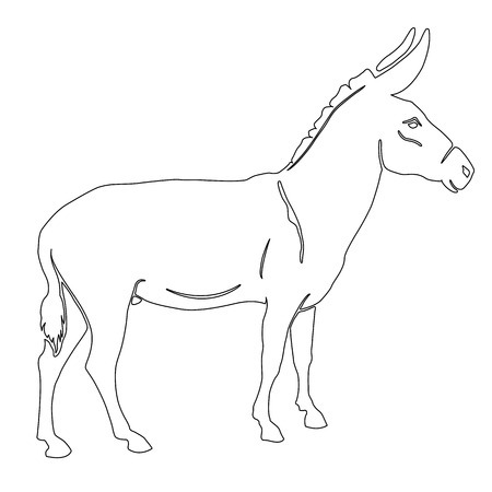 herbivorous: illustration donkey silhouette black white