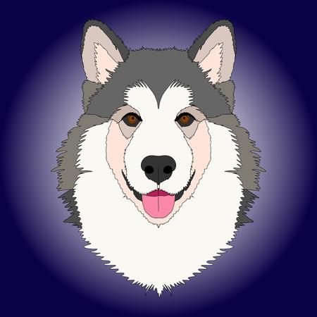 Malamute dog face color Illustration