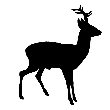 roe deer silhouette Illustration