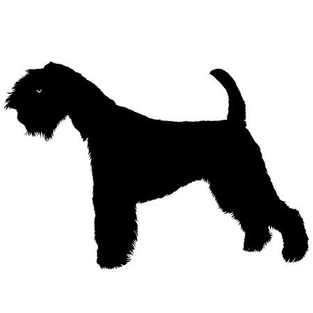 airedale terrier: Terrier dog black silhouette vector illustration isolated Illustration