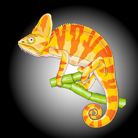 saurian: yellow chameleon on a branch isolated black background vector illustration