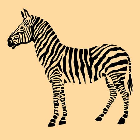 animal silhouette: Zebra animal black silhouette