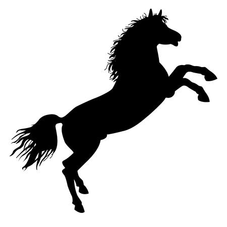 stately: Black horse silhouette Illustration