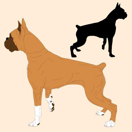 boxer dog: boxer dog black silhouette realistic