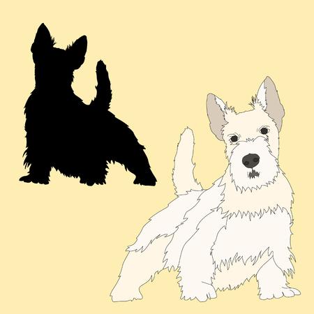 Scottish Terrier dog black silhouette realistic Vectores