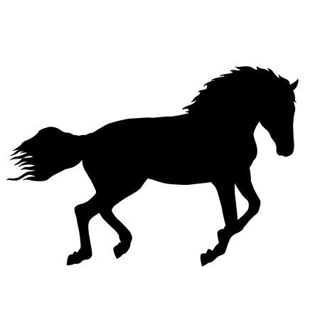 Black horse silhouette isolated illustration 向量圖像