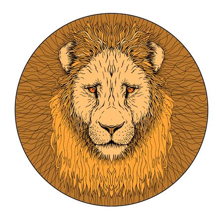 사자 얼굴 색상 절연 현실적인 그림