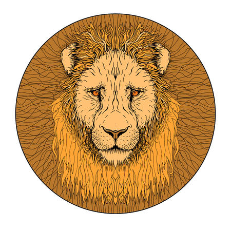 lion face color isolated realistic illustration