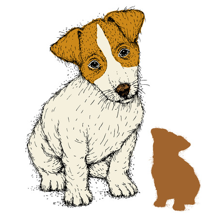 fox terrier puppy: fox terrier puppy sit realistic color Illustration