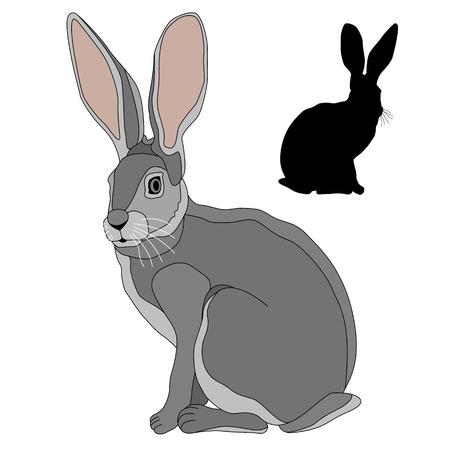 회색 토끼 검은 실루엣 일러스트의 현실적인 집합 일러스트